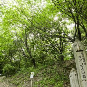 (公園)相生山緑地_天白区周辺